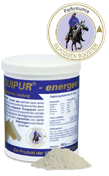 equipur-energy-plus