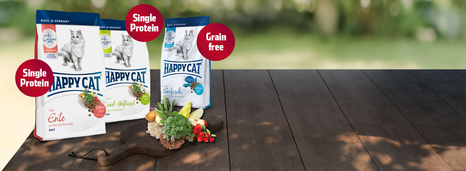 Start-Happy-Cat-La-Cuisine_01
