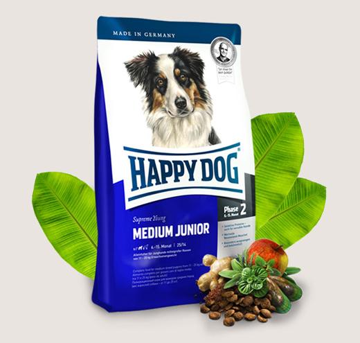 happy-dog-medium-junior-520x495