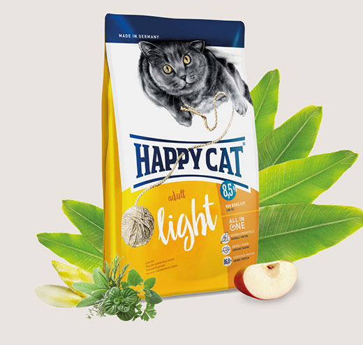happy-cat-adult-light